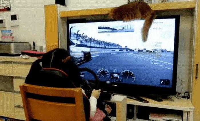 พบเซียนเกม Gran Turismo เป็นสาวน้อยวัยเพียง 5 ขวบ