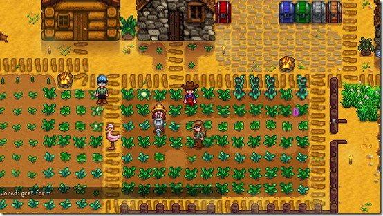 โหมดเล่นกับเพื่อนในเกม Stardew Valley ตัว Beta เตรียมเปิดให้เล่นเร็วๆนี้