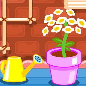 cute flower studio