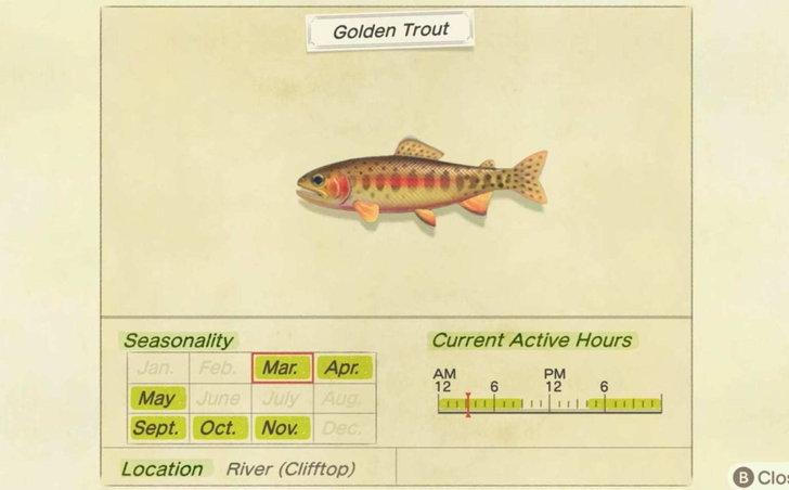 เกมยอดนิยมคนชอบตกปลา ปลาและแมลง บางตัวจะไม่มีให้จับหลังสิ้นเดือนนี้แล้ว