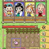 <b>Puzzle de Harvest Moon</b> [Preview]