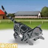 Hanadekakurabu Animal Paradise [Preview]