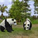 Wildlife Park 2 [Preview]