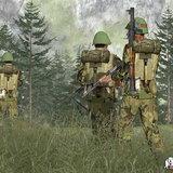 <b>Armed Assault: Combat Operations</b>