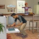 The Sims2: Seasons