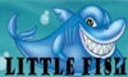Little Fish in a Big Sea