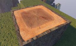 ม็อดใหม่ Minecraft เปลี่ยนความเหลี่ยมให้ดูน่าเล่นมากขึ้น