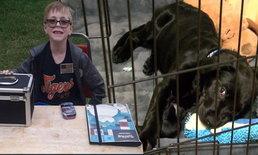 เด็ก 8 ขวบยอมขายการ์ด Pokemon เพื่อหาค่าผ่าตัดลูกสุนัข