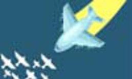 Air Traffic Mania: Bird Strike!