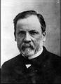 หลุยส์ ปาสเตอร์  นักเคมีชาวฝรั่งเศสเสียชีวิต