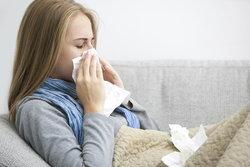 ไข้หวัด