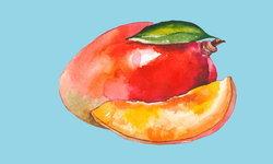 ประโยชน์ของมะปรางหวาน-มะยงชิด ผลไม้หน้าร้อน รสชาติสดชื่น