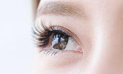 """""""ไรขนตา"""" ปรสิตตัวน้อย ต้นเหตุของอาการระคายเคืองรอบดวงตา"""