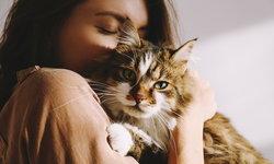 """""""เชื้อราแมว"""" ภัยอันตรายจากการเลี้ยงสัตว์"""