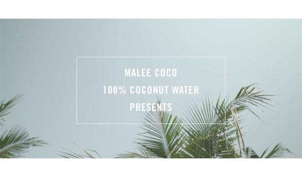 """เอาใจคนรักน้ำมะพร้าวสุดฤทธิ์! ครั้งแรกในไทยที่ """"น้ำมะพร้าว"""" ถูกเก็บจากต้น…ส่งตรงถึงคุณ!"""