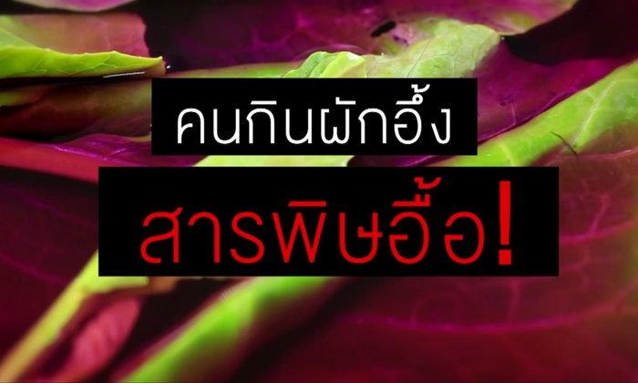 อันตราย! ผักไทยพบสารเคมีตกค้างเกือบ 100% แทบทุกชนิด