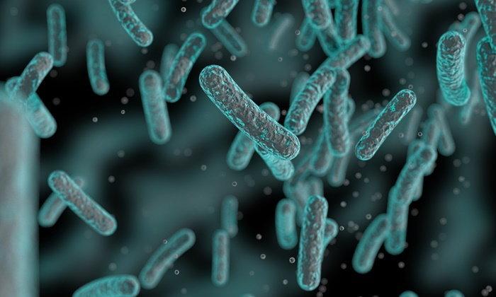 """เตือน! """"แบคทีเรียดื้อยา 12 ชนิด"""" น่ากลัวไม่แพ้ไวรัสซิก้า-อีโบล่า"""