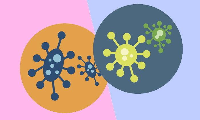 """นักวิจัยกังวล """"แบคทีเรียดื้อยา"""" อาจคร่าชีวิตประชากรโลก 10 ล้านคน"""