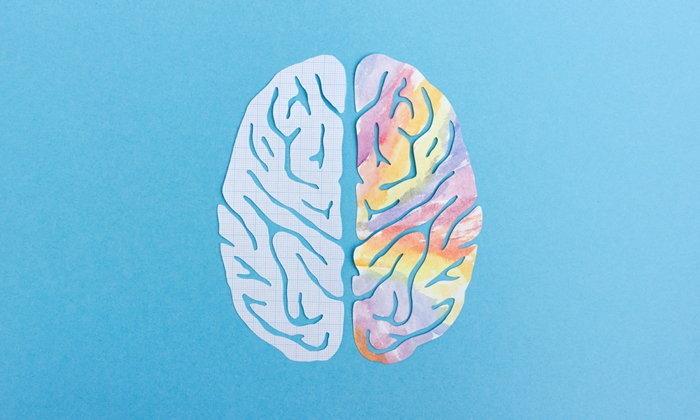 """4 พฤติกรรมทำลาย """"สมอง"""" โดยไม่รู้ตัว"""