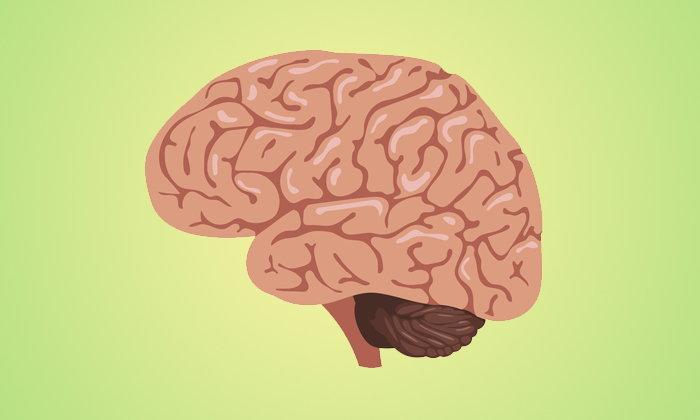 """""""หมวกพลังงานกระแสไฟฟ้า"""" ความหวังใหม่ในการรักษาผู้ป่วยโรคมะเร็งสมอง"""