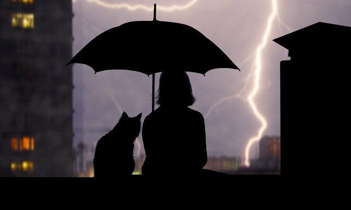 """7 ข้อห้าม-ข้อควรทำยามฝนตก ลดเสี่ยง """"ฟ้าผ่า"""""""