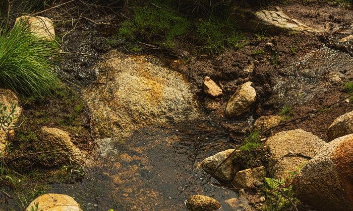 """""""บ่อน้ำผุด"""" ตามธรรมชาติ ไม่ควรกิน เสี่ยงไตเสียหาย-นิ่วในทางเดินปัสสาวะ"""