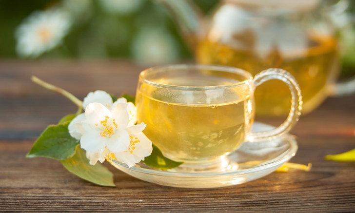 """5 ประโยชน์ของ """"ชาขาว"""" ชาจากธรรมชาติ บำรุงสุขภาพ"""