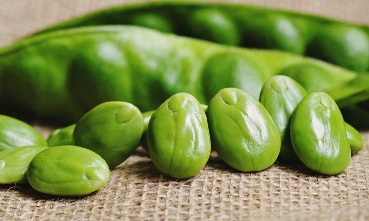 """7 ประโยชน์ของ """"สะตอ"""" สุดยอดพืชผัก ของดีที่ชาวปักษ์ใต้นิยมรับประทาน"""