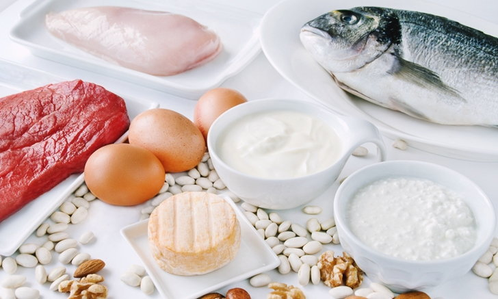 What are the pros and cons of plant-based proteins? AHR0cHM6Ly9zLmlzYW5vb2suY29tL2hlLzAvdWQvNS8yNTUyMy9wcm90ZWluLmpwZw==