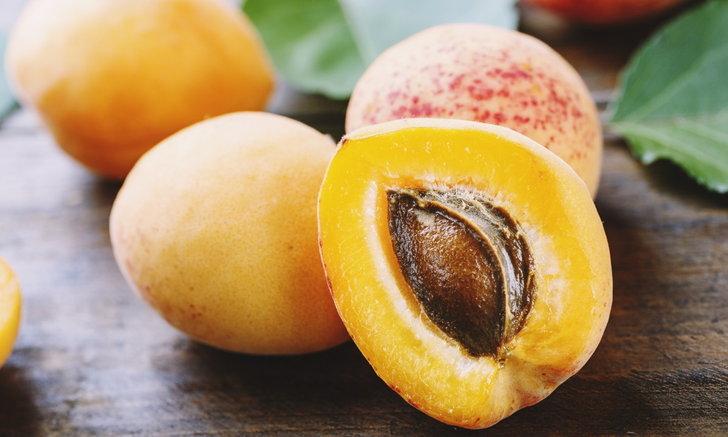รู้จัก Stone Fruits และประโยชน์ต่อร่างกาย