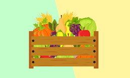 10 เทคนิคง่ายๆ กินเจ อิ่มบุญ สุขภาพดี