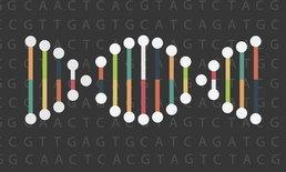 """DNA ในร่างกาย กำหนดวิธี """"ออกกำลังกาย"""" ที่เหมาะสมได้"""
