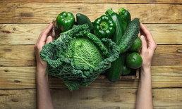 Plant-Based Diet คืออะไร? ดีต่อสุขภาพอย่างไร?