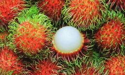 """แนะวิธีกิน 5 ผลไม้ไทยให้ได้ประโยชน์ เลี่ยงรับ """"น้ำตาล"""" มากเกินไป"""