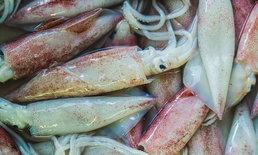 """อันตรายจาก """"ฟอร์มาลีน"""" และวิธีเลือกซื้ออาหารทะเลให้ปลอดภัย"""