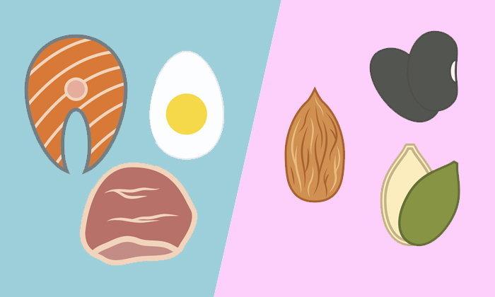 โปรตีนจากเนื้อสัตว์ VS โปรตีนจากพืช แบบไหนเหมาะกับคุณมากกว่ากัน?