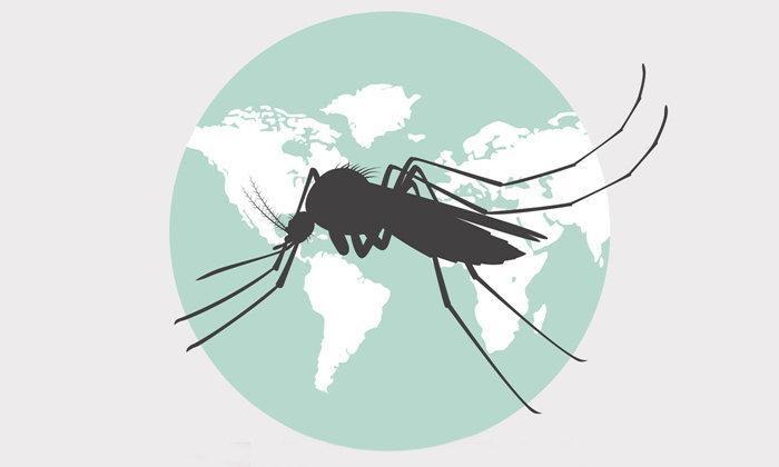 """วิธีป้องกัน """"ไข้มาลาเรีย-ไข้จับสั่น"""" ที่ถูกต้อง"""