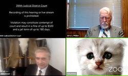 กลายเป็นไวรัลดัง เมื่อฟิลเตอร์ ZOOM เปลี่ยนทนายกลายเป็นน้องเหมียวตาแป๋ว