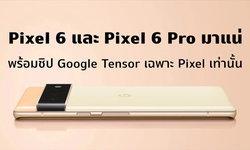 กูเกิลสปอยล์หมด!! Pixel 6 และ Pixel 6 Pro ดีไซน์เป๊ะตามข่าวลือ พร้อมชิปใหม่ที่ทำมาเพื่อ Pixel