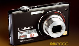 Panasonic Lumix DMC-FX48 Handy and Funny Camera