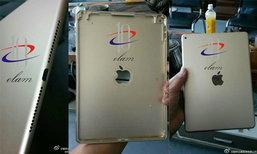 นี่ก็หลุด! ภาพฝาหลัง iPad Air 2