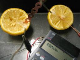 ส้มตำถาด อันตรายจริงหรือ? ไขข้อข้องใจ ทำไม ไม่ควรทาน