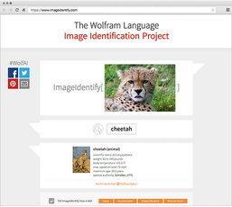 """เทคโนโลยีสุดหรู! Wolfram Research โชว์ระบบตอบคำถาม """"นี่คือภาพอะไร"""""""