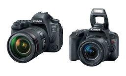 Canon เปิดตัว EOS 6D Mark 2 และ Rebel SL2 กล้องมือโปรที่ถ่ายวีดีโอ 4K ได้
