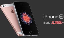 สรุปราคาและโปรโมชั่น iPhone SE จาก 3 ค่าย ถูกสุดเริ่มต้นที่ 2,900 บาทเท่านั้น!