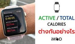 Active Calories กับ Total Calories ใน Apple Watch แตกต่างกันอย่างไร