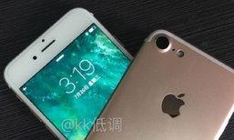 หลุดเพิ่มด้านหลัง iPhone 7 พร้องที่แปลงช่องเสียบ Lighting เป็นช่องเสียบหูฟังแบบใหม่