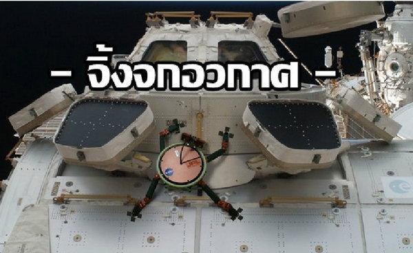 """อย่างจ๊าบ! """"จิ้งจกอวกาศ"""" นวัตกรรมใหม่ล้ำๆไปเลย จากนาซ่า"""