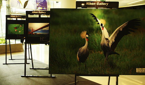 Nikon Day 2010 : งานสำหรับคนรัก Nikon ครั้งที่ 13