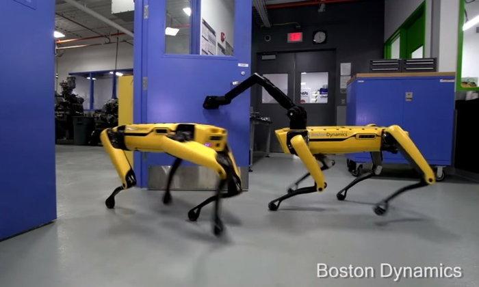 Boston Dynamics โชว์หุ่นยนต์สุนัขตัวใหม่ มาพร้อมแขนกลช่วยเปิดประตูเองได้